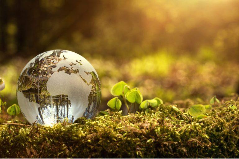 Saint Lucia Development Bank Launches Climate Change Adaptation Loans